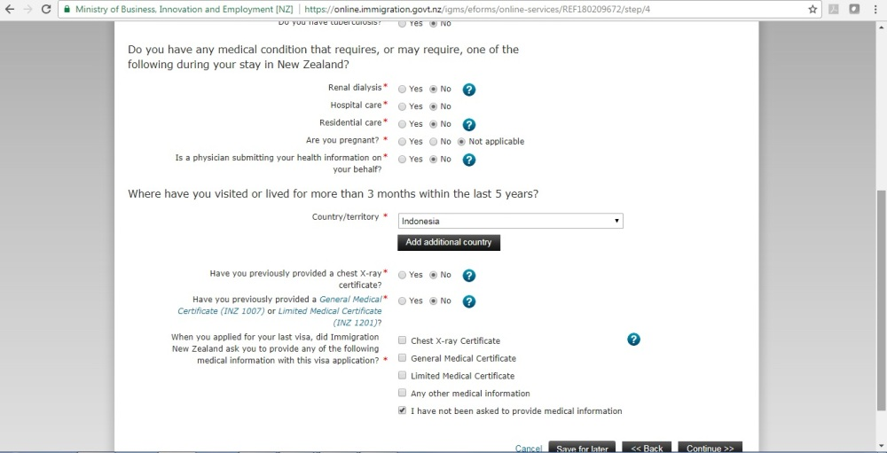 visa application indonesia from nz